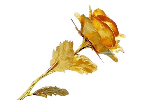 0879 24K Artificial Golden Rose/Gold Red Rose with Gift Box (10 inches) -